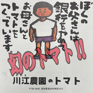希少!幻のトマト【川江農園のフルーツトマト】L22〜24玉入り!入荷しました!!(野菜)