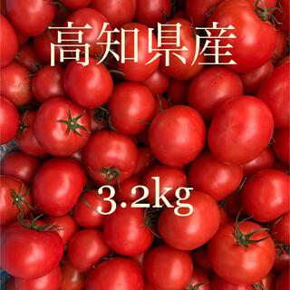 トマト 高知県産(野菜)