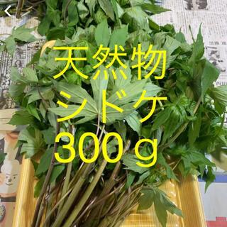 シドケ  しどけ  天然物  300g(野菜)
