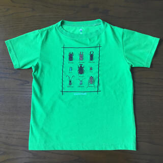 mont bell - 虫 Tシャツ