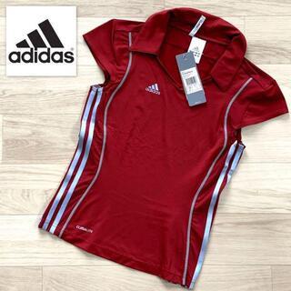アディダス(adidas)の未使用 アディダス adidas Tシャツ スポーツ Mサイズ(ウォーキング)