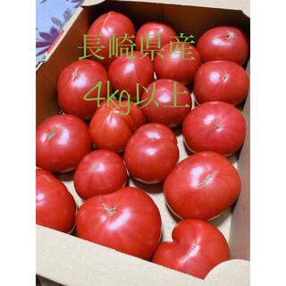 農家直送 長崎県産 トマト 4kg以上 訳あり(野菜)