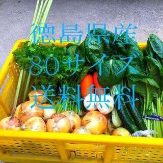 野菜詰め合わせ オマケ付き(野菜)
