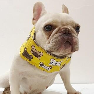 4PETS 犬服 クールネック クールスヌード クーラー 熱中症対策 XLサイズ