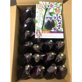 大阪泉州の水茄子24個入り(野菜)