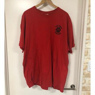 GILDAN - A11 GILDAN Tシャツ