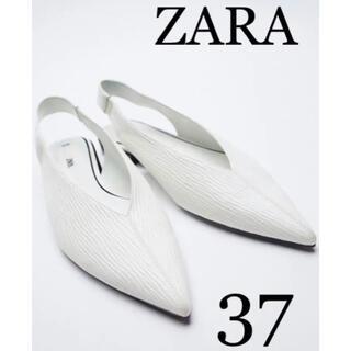 ZARA - ZARAパンプス 新品未使用