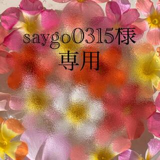 saygo0315様 専用 オキザリス球根(その他)