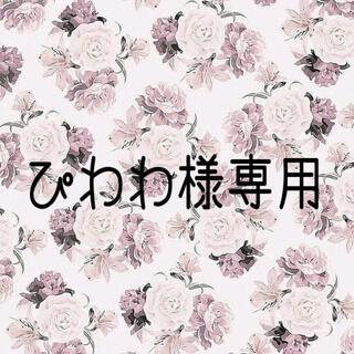 ぴわわ様専用ページ