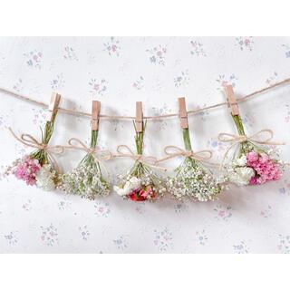 サーモンピンクのバラのホワイトドライフラワーガーランド♡スワッグ♡ミニブーケ(ドライフラワー)