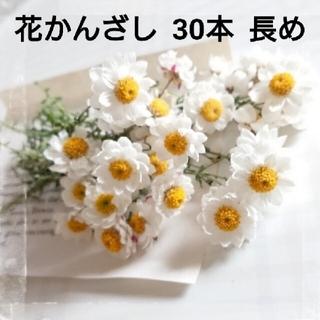 残りわずか 茎つき 花かんざし 30本  ドライフラワー  花材  (ドライフラワー)