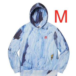 Supreme - Supreme The North Face Ice Climb Hooded