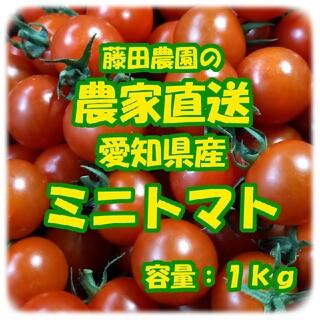 愛知県産 ミニトマト 良品 1kg