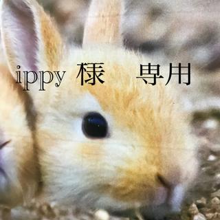 コイズミ(KOIZUMI)のKOIZUMI! ヘアアイロン&アイロンブラシ セット品!(ヘアアイロン)
