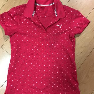 プーマ(PUMA)のプーマ ゴルフ ポロシャツ(その他)