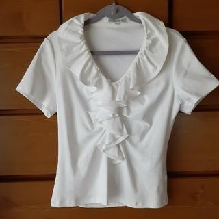 ナラカミーチェ(NARACAMICIE)のナラカミーチェコットンシャツ(カットソー(半袖/袖なし))