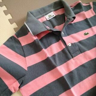 LACOSTE - LACOSTE/ポロシャツ