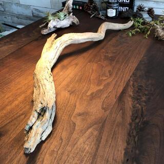 立派なひねり流木…天然物、オブジェ、インテリアに(彫刻/オブジェ)