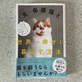 元・保護猫と世界一幸せに暮らす方法(住まい/暮らし/子育て)