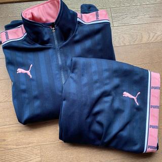 プーマ(PUMA)のPUMA プーマ ジャージ 上下 ピンク 紺 ネイビー ストライプ 男女 刺繍(セット/コーデ)