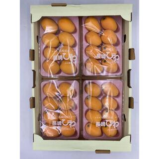 長崎県産 茂木びわ M-2L 4パック 1パック約250g(フルーツ)
