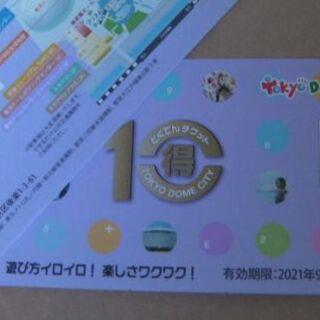 得10チケット 20p(遊園地/テーマパーク)