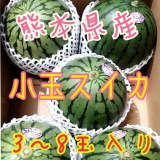 熊本県産小玉スイカ(フルーツ)