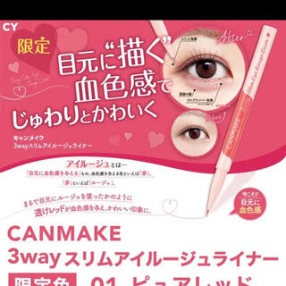 CANMAKE - CANMAKE限定品
