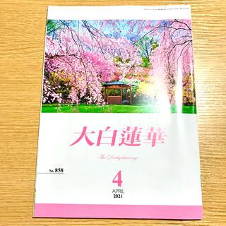 ★新品未使用品★ 大白蓮華 2021年4月号 (その他)
