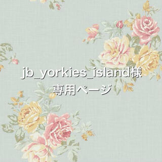 jb_yorkies_island様専用ページ(ペット服/アクセサリー)