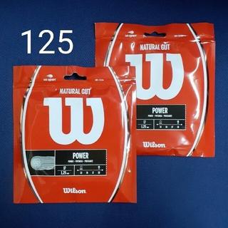 wilson - ウイルソン ナチュラル ガット 17 Wilson NATURAL 2張りセット