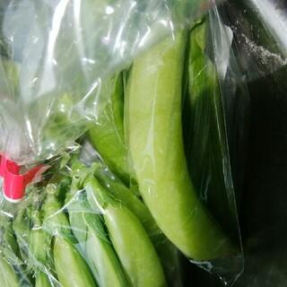 春野菜セット