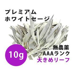 【無農薬】ホワイトセージ  高品質10g 解説マニュアル&チャック付きポリ袋(お香/香炉)