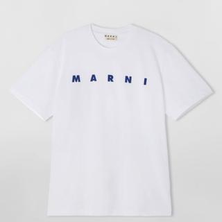 Marni - MARNI ライトコットンジャージー Tシャツ フロントロゴ