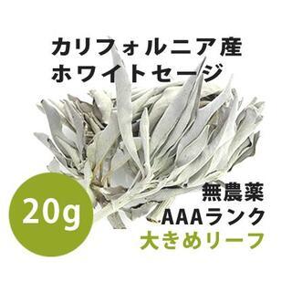 【無農薬】ホワイトセージ  高品質20g 解説マニュアル&チャック付きポリ袋(お香/香炉)
