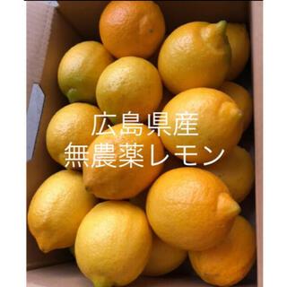 国産 レモン 広島県産 無農薬 レモン 瀬戸内レモン 2kg