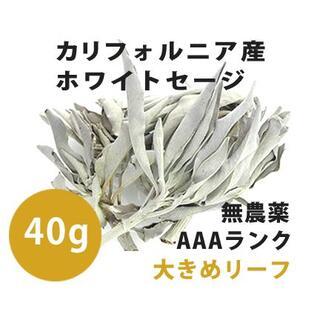 【無農薬】ホワイトセージ  高品質40g 解説マニュアル&チャック付きポリ袋(お香/香炉)