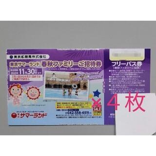 東京サマーランド 株主優待券(遊園地/テーマパーク)
