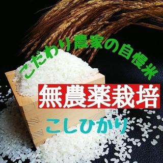 こだわり農家の自慢米 白米5㎏(無農薬栽培)(米/穀物)