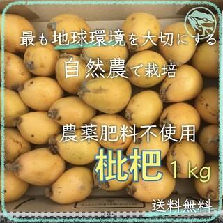 枇杷1kg 無農薬ビーガンスイーツ世界平和デトックスフルーツ自然農法エコ自然栽培(フルーツ)