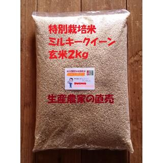 ★新米★[玄米]特別栽培米ミルキークイーン2kg有機肥料減農薬栽培(米/穀物)
