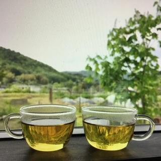 蒸し乾燥よもぎ茶 無農薬 20g  ハーブティー (茶)