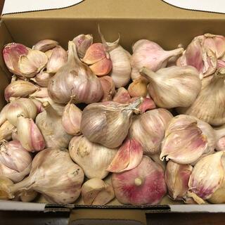 無農薬 国産生ニンニク・バラ1キロ(野菜)