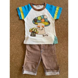 ビッツ(Bit'z)のビッツ 100センチ Tシャツ ハーフパンツ 2点セット(Tシャツ/カットソー)