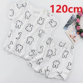 ミッフィールームウェア パジャマ 半袖 半ズボン ベビー キッズ 120cm(パジャマ)