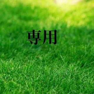 【説明書つき】高級芝生の種700g(耐暑性あり!冬でも青い西洋芝生(その他)