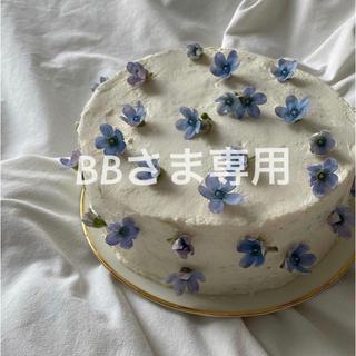 エディットフォールル(EDIT.FOR LULU)の専用【新品未使用】BAGGU バグー スタンダード garden bed(エコバッグ)