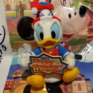Disney - 新作♡ディズニー ドナルド バースデー ぬいぐるみバッジ