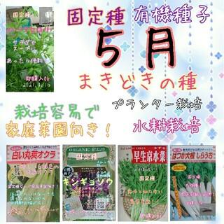 5月まきどきの固定種 野菜の種 ハーブの種 水耕栽培 家庭菜園 種 種子 園芸(野菜)