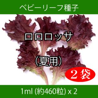 ベビーリーフ種子 B-11 ロロロッサ(夏用) 1ml 約460粒 x 2袋(野菜)